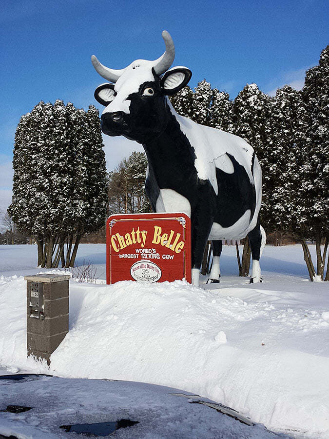 Not just a talking cow, but the  World's Largest TALKING Cow in Neillsville WI (population 2,400)